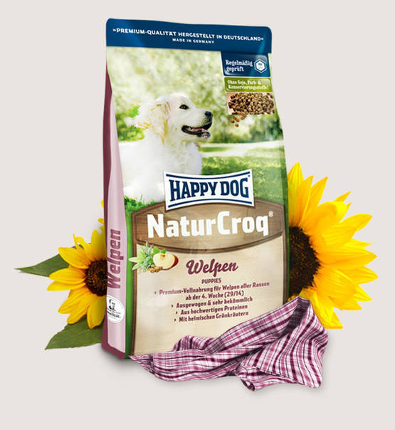 Happy dog naturcroq puppies