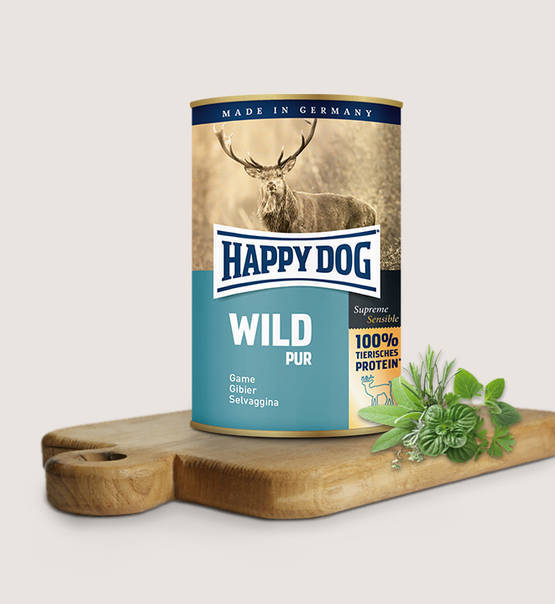 Happy dog puur wild
