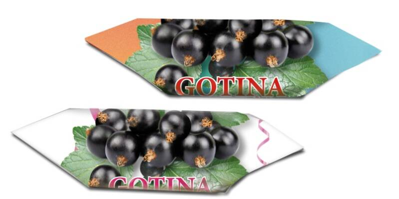 """Milk – based candy """"Gotina"""" with blackcurrant"""