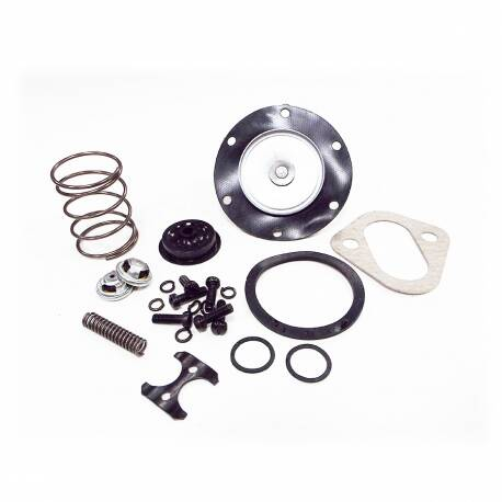 Fuel Pump Overhaul Kit