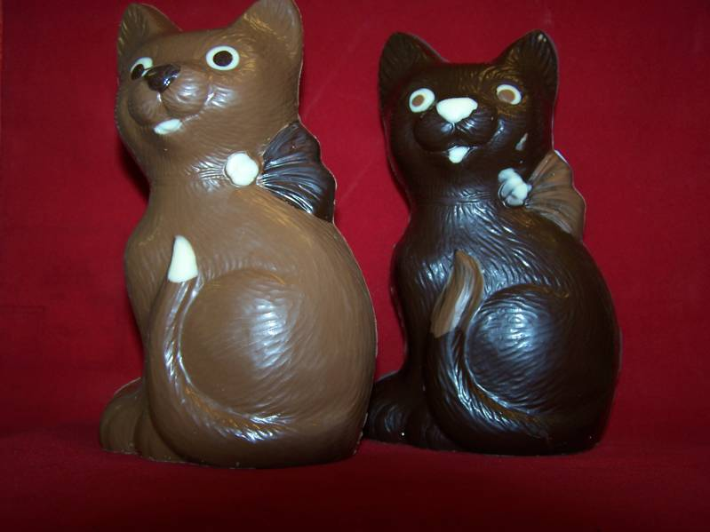 Poes pure chocolade