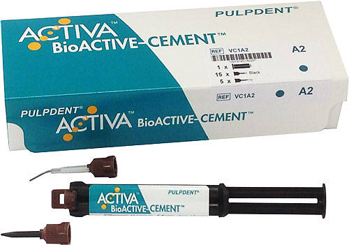 185621 PULPDENT ACTIVA BIOACTIVE CEMENT SINGLE REFILL TRANSLUCENT