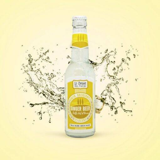 Le spume del papini ginger beer