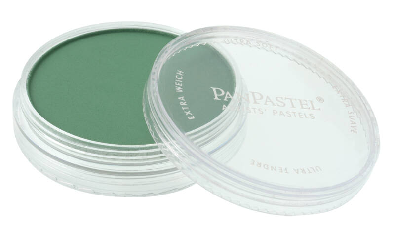 PanPastel Permanent Green Shade 640.3