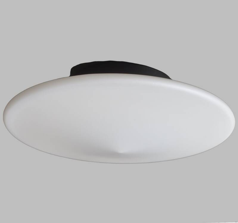 Raak Discus wall or ceiling lamp, 3 available