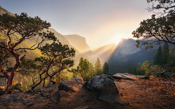Fotobehang Yosemite National Park - 450 x 280 cm