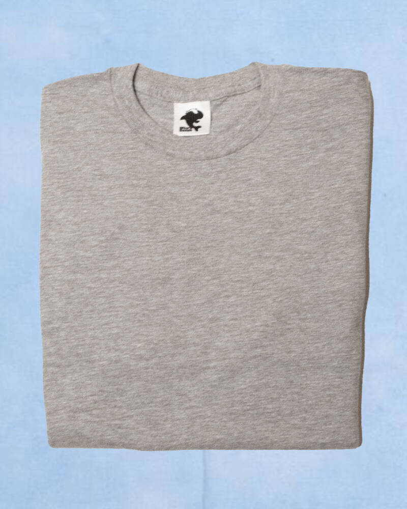 Grey T-Shirt With Sideview