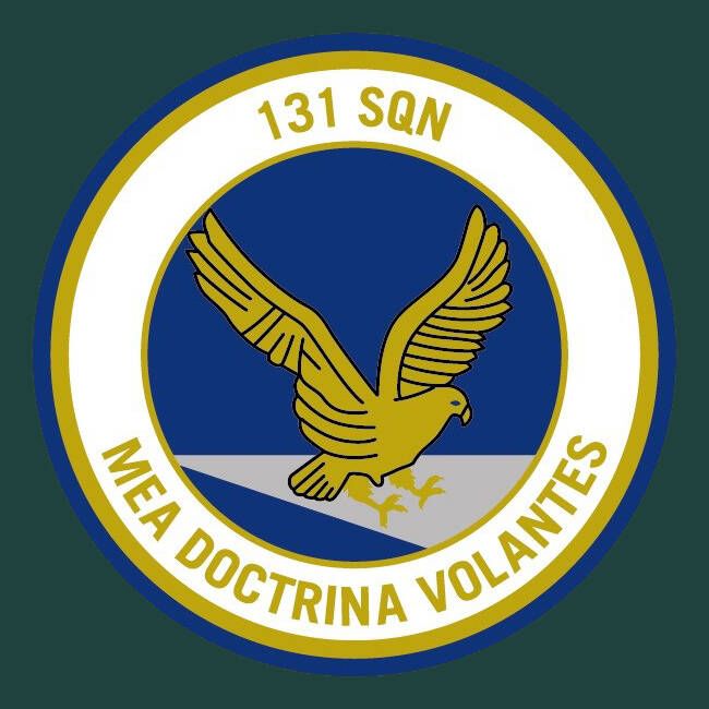 131 Sqn PATCH #002