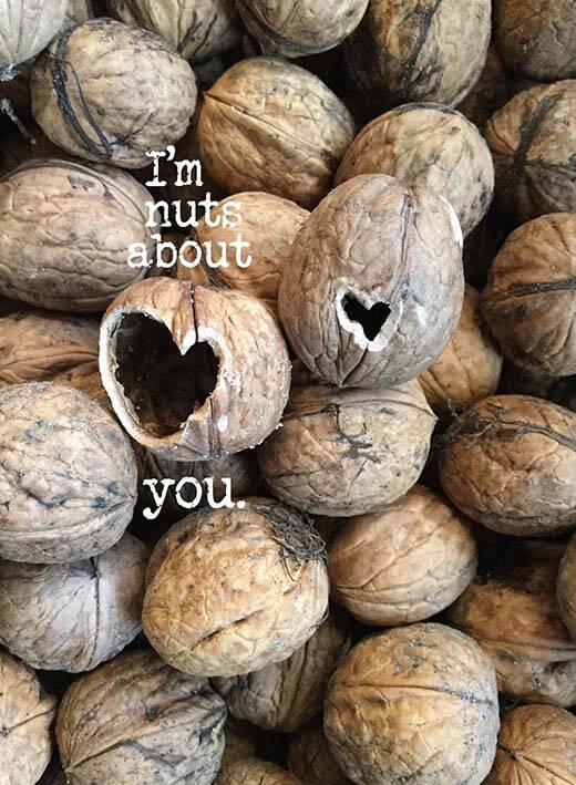 I'm nuts about you