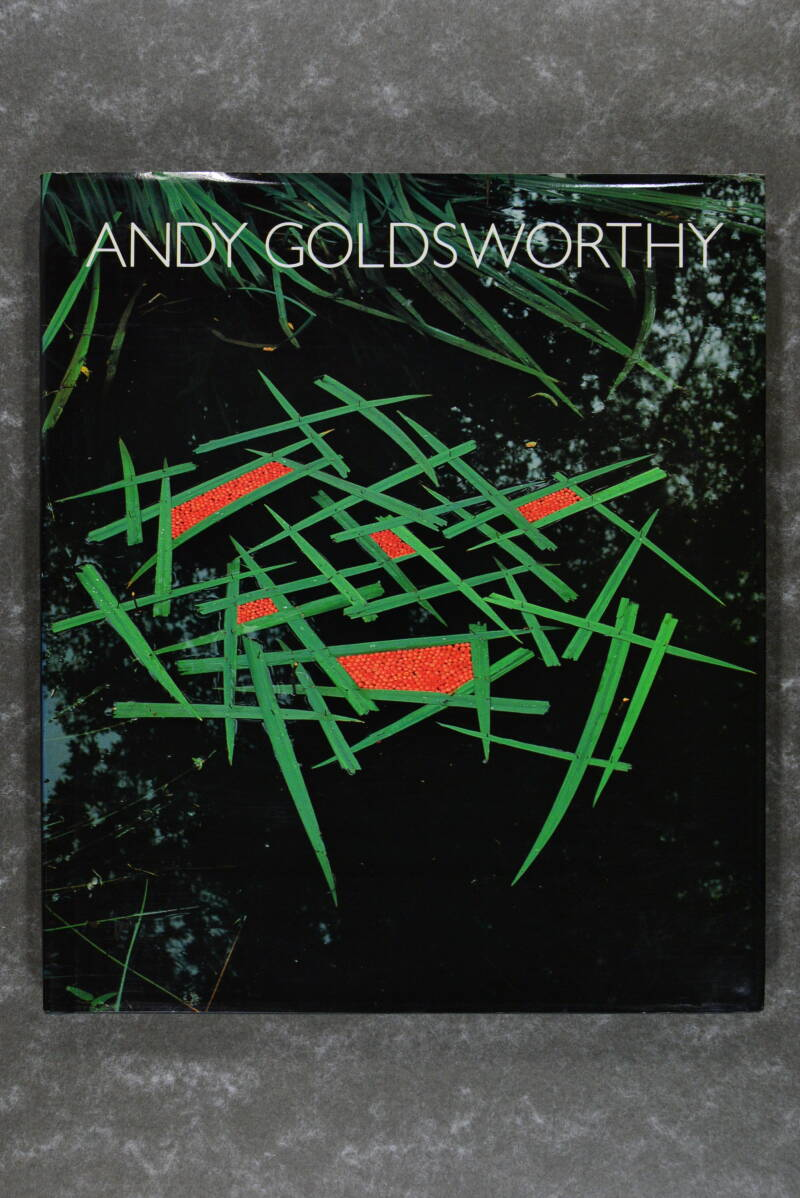 Goldsworthy,  Adrian  -  Andy Goldsworthy