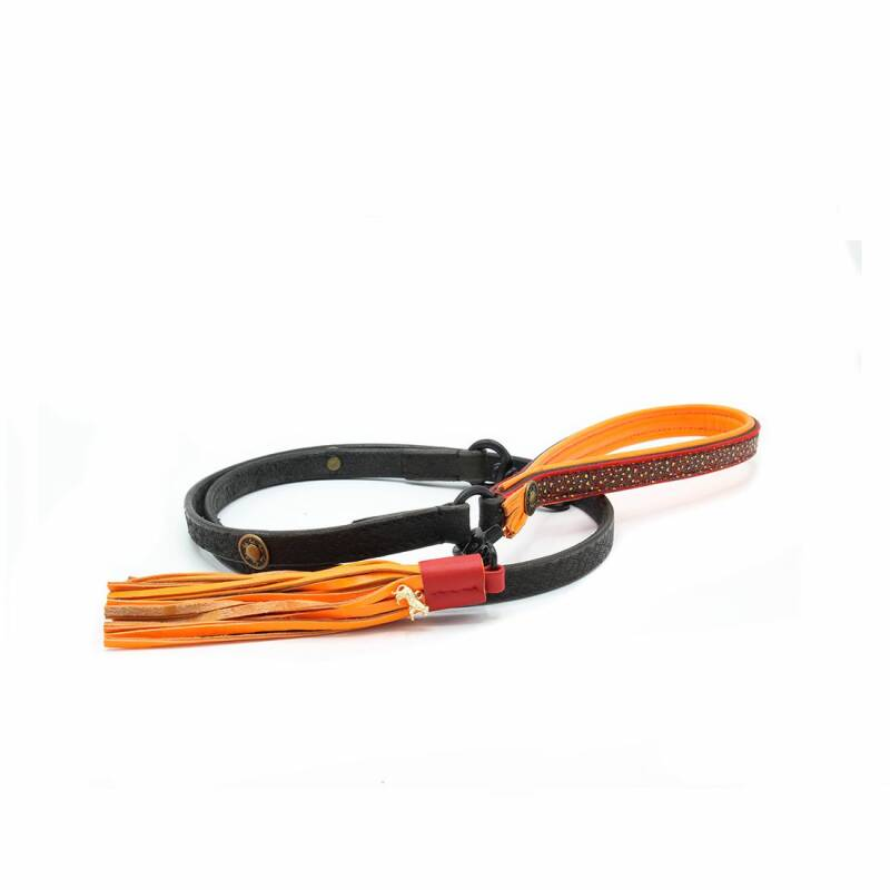 DWAM Dog Leashes 2 colors *