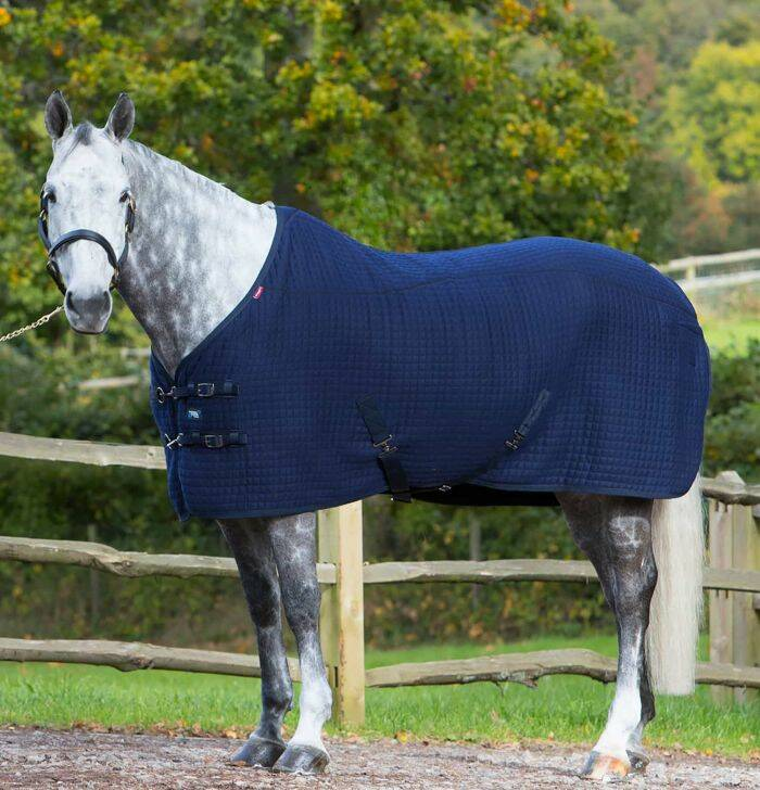 LeMieux Thermo Cool Rug Navy