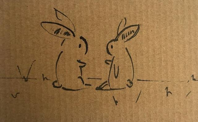 Two bunnies chatting