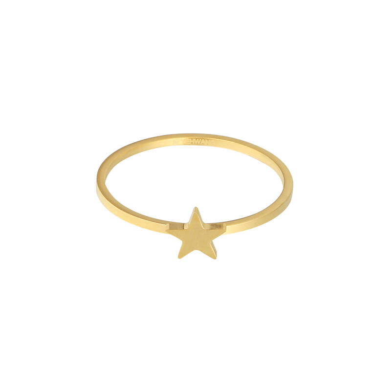 Ring Wish Upon A Star Goud (RVS)