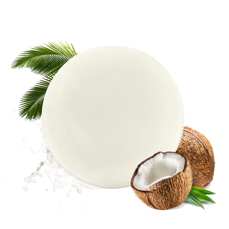 PURC Conditioner bar Coconut