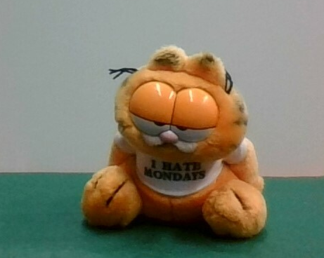 garfield cat soft