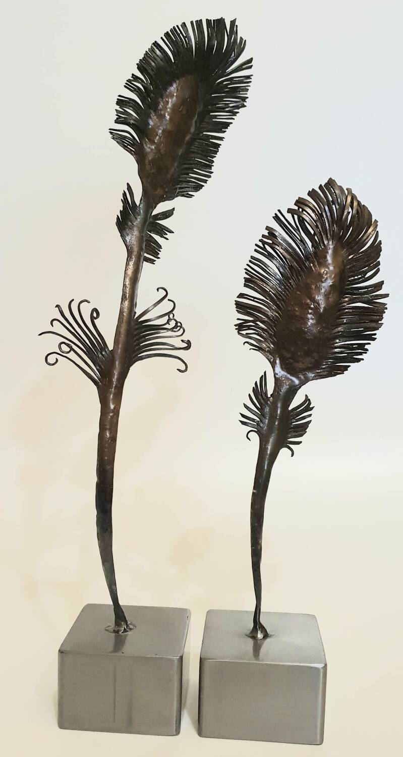 Peacock feathers.