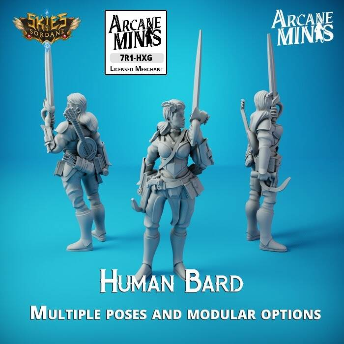 Human Bard Merchant Guild