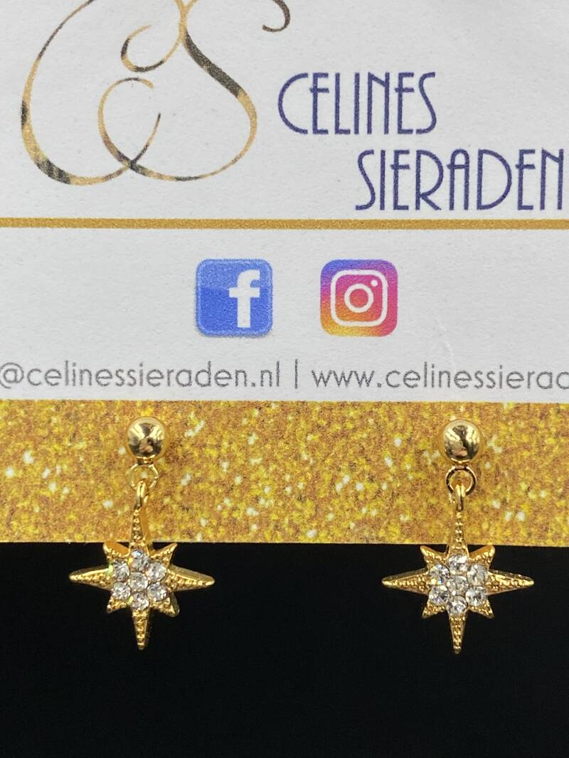 "Oorbellen ""Starry Night l"" goud"