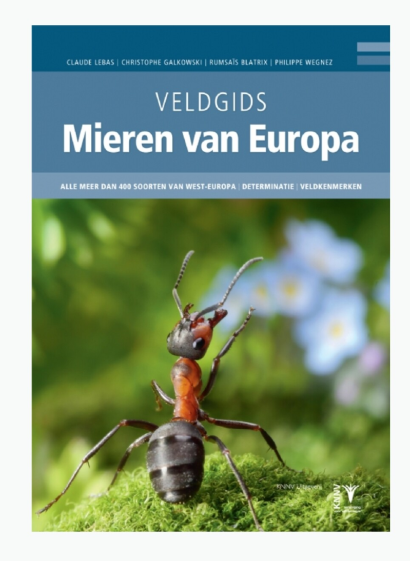 Field guide ants of Europe