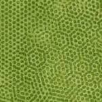 Q460 - stof olivine - Dimples by Makower
