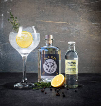 Partybox Gin tonic