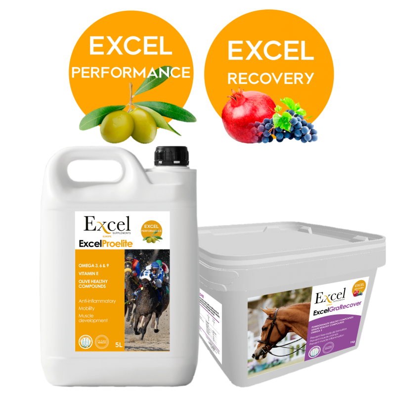 Package Excel ProElite - 2L + Excel GraRecover
