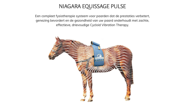 Equissage Pulse behandeling / singel