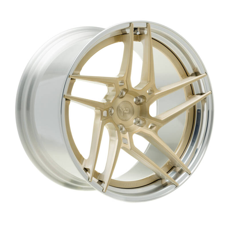 Yido Performance | YP 4.2 | FORGED CUSTOM | Royal Gold/ Polished lip