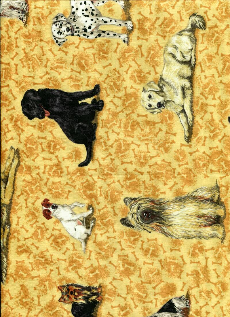 Cats and dogs cat 17 B long quarter 23x110cm