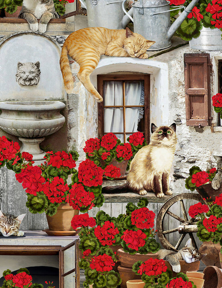 Cats and dogs Cats and Geraniums-Cat-C6381-Porch