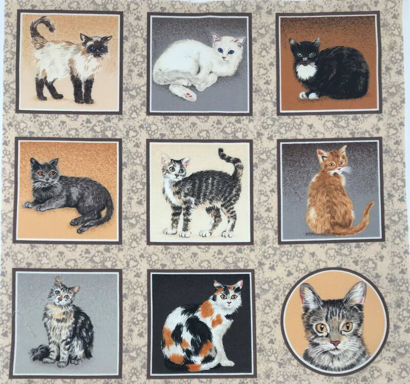 Cats and dogs labels cats 8