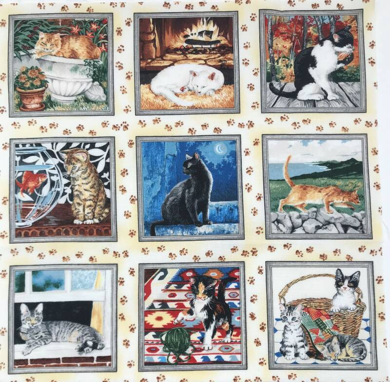 Cats and dogs labels cat 9