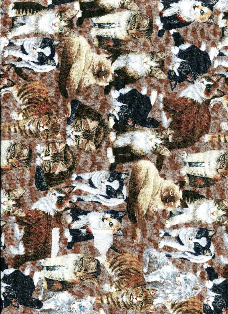 Cats and dogs cat 9 C long quarter 23x110 cm