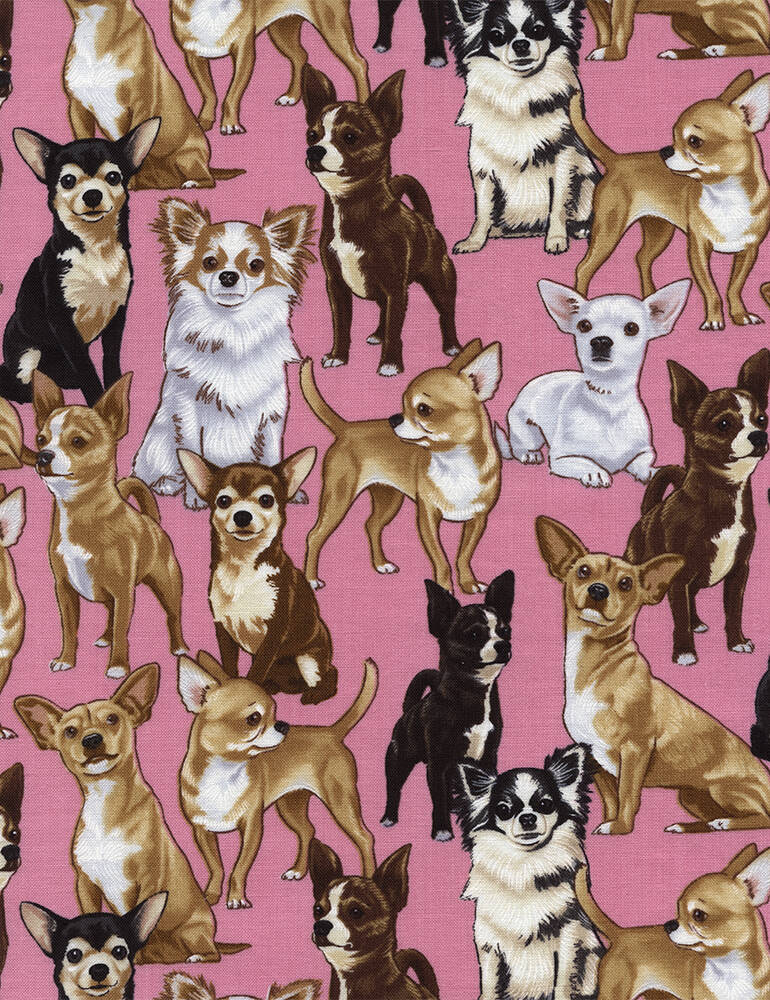 Cats and dogs Chihuahuas-GM-C3191-Pink