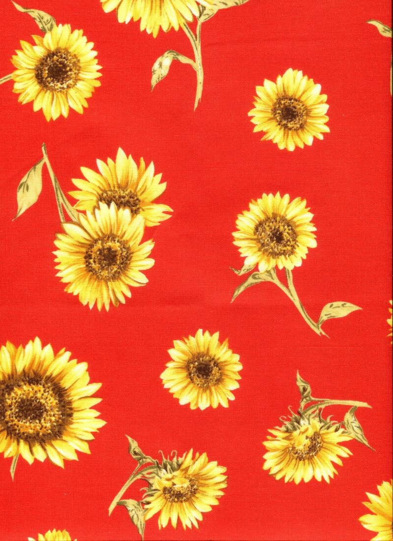 Flowers sunflowers on red