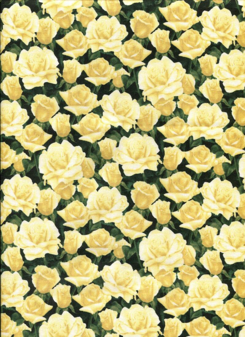 Flowers yellow roses all