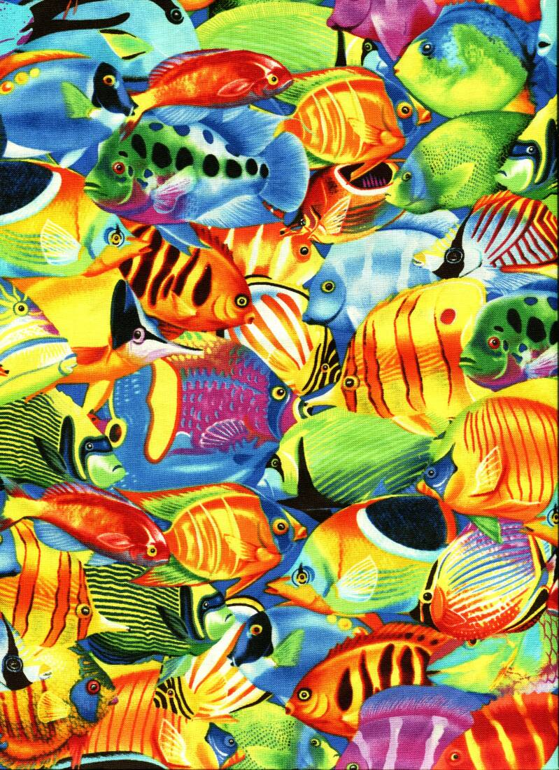 Maritime Tropical Fishes