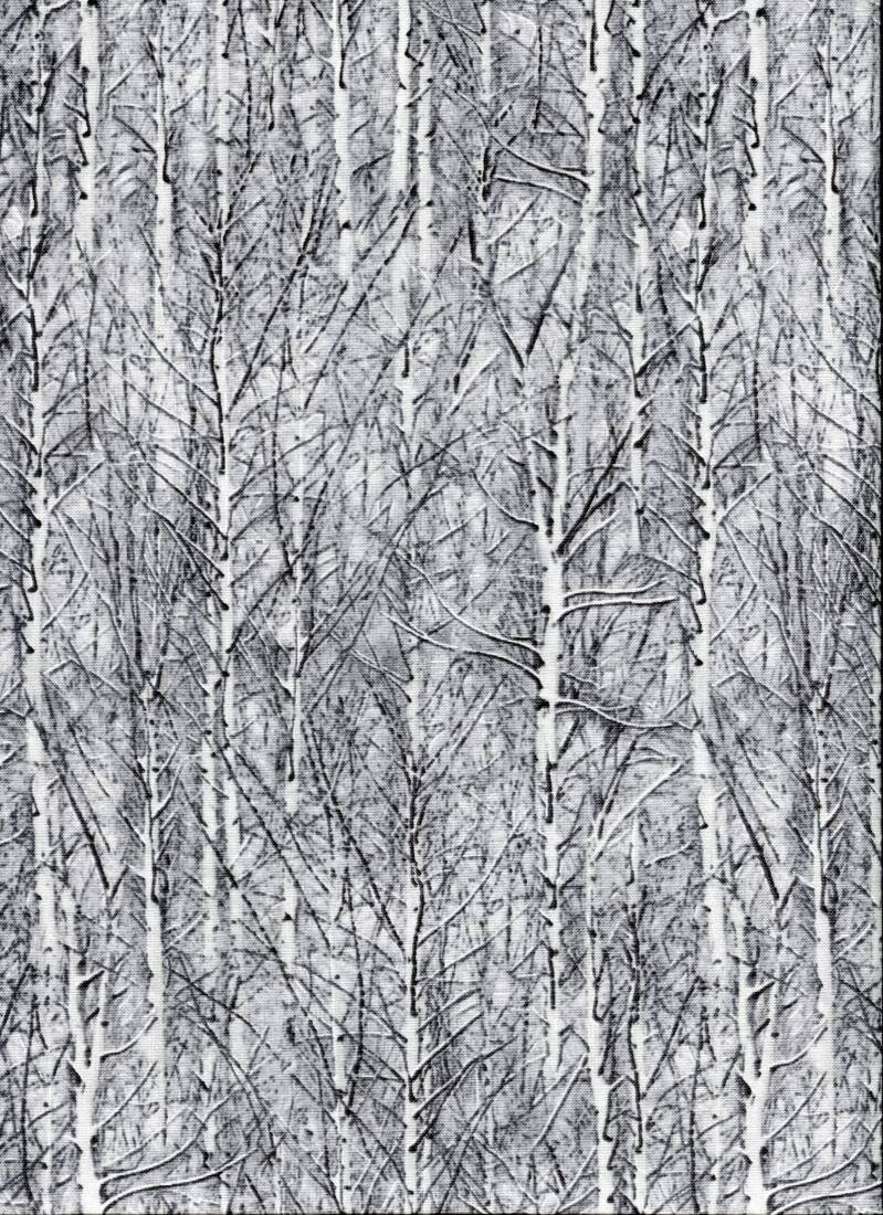 Nature trees in winter