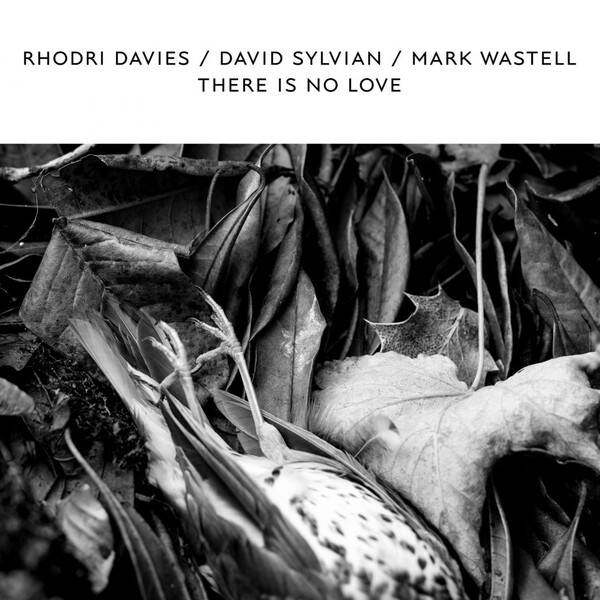 Davies, Rhodri / David Sylvian / Mark Wastell ‎– There Is No Love