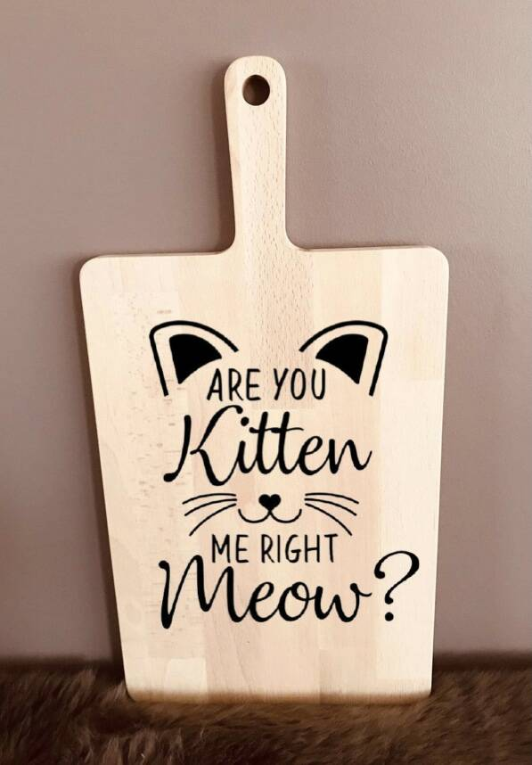 Tapasplank : are you kitten me right meow ?