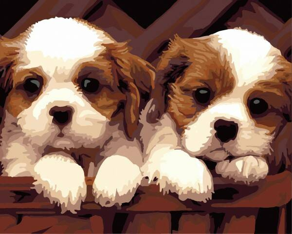 Painting By Numbers Set Puppies 8891