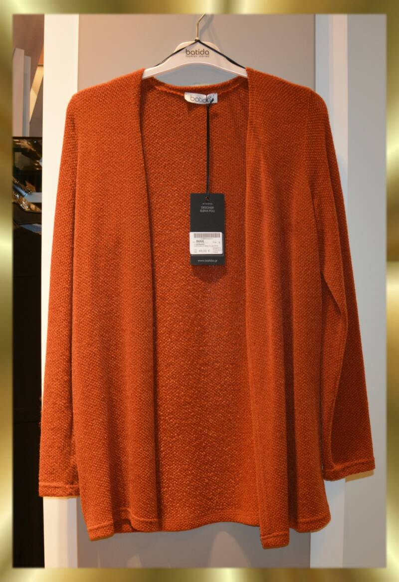 Cardigan 8666 ginger