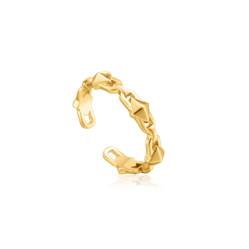 Ania Haie Zilver/verguld ring R025-02G