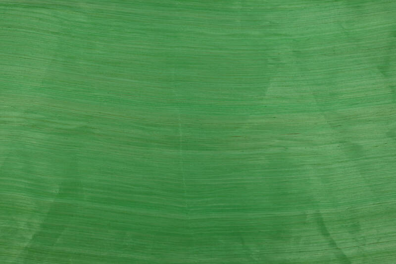 Silk Abaca - 021 - Mint Green