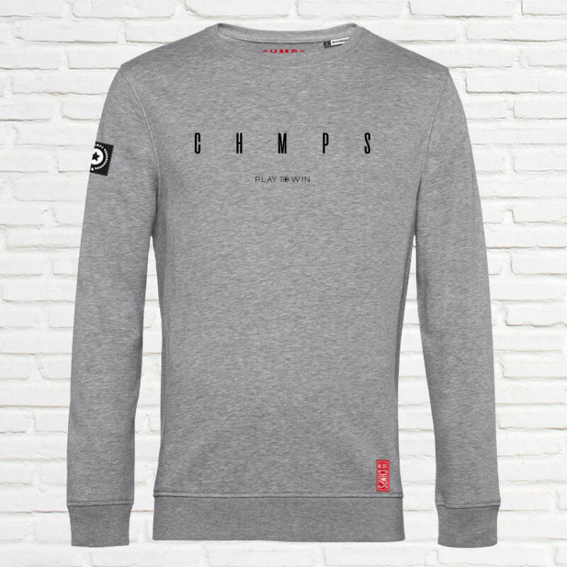 Wide Space Sweatshirt Grey