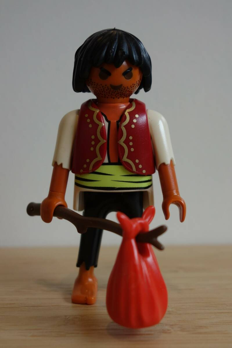 Playmobil Piraat