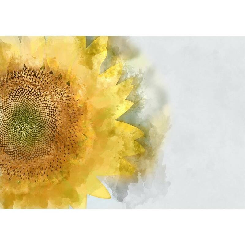 Sunflower A3