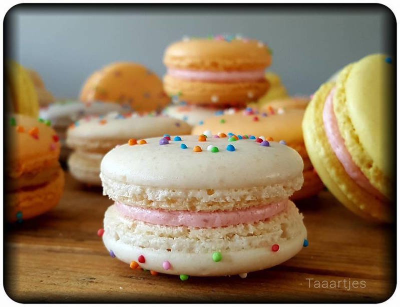 party macarons