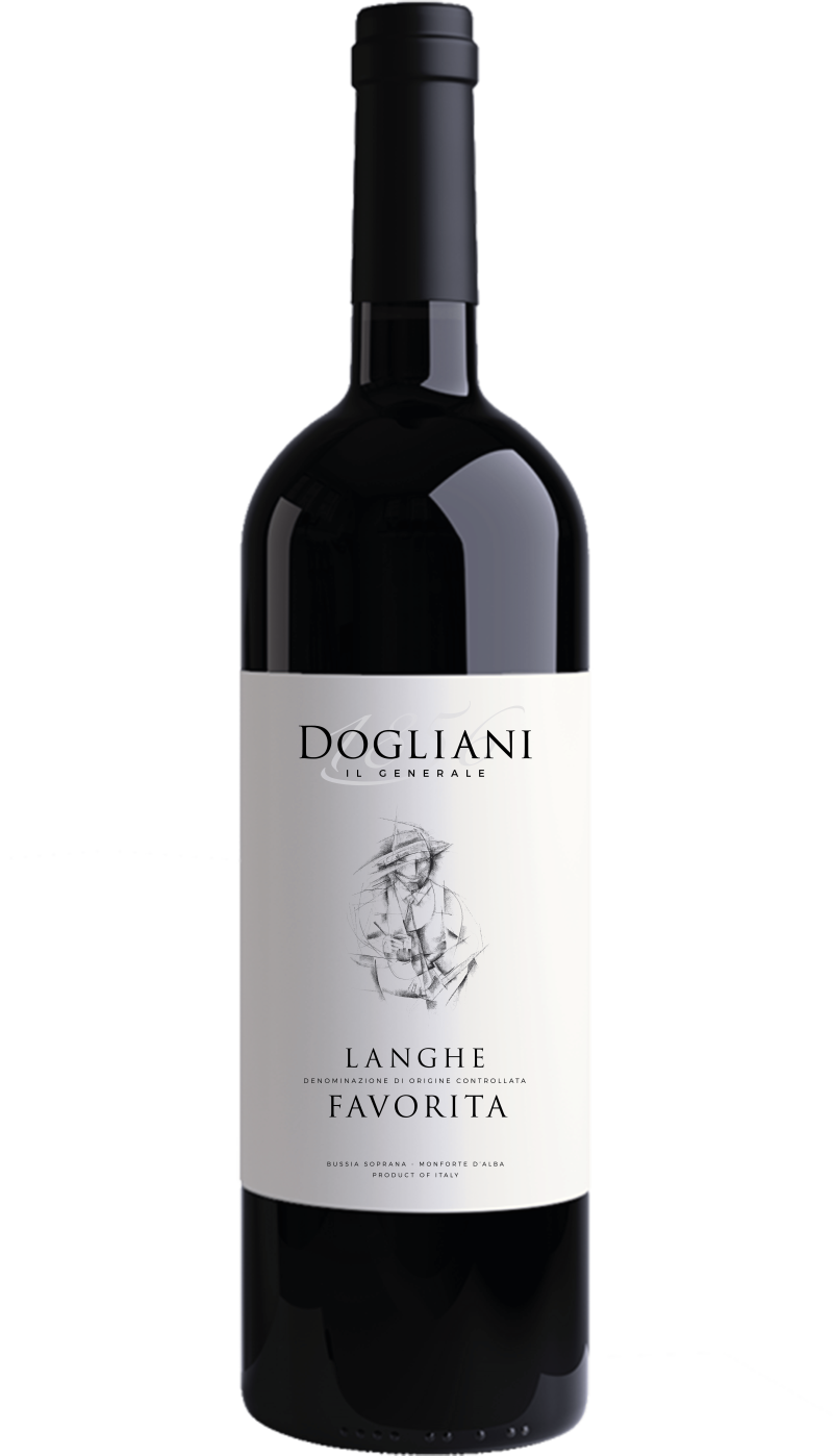 Langhe Favorita DOC 2018 750ML